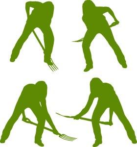 illustration_green_web